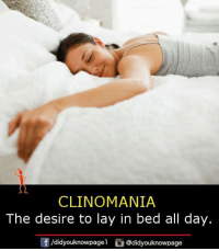 Clinomania: CLINOMANIA  The desire to lay in bed all day.  /didyouknowpagel @didyouknowpage