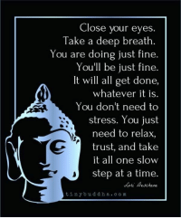 Memes, Time, and 🤖: Close your eyes.  Take a deep breath.  You are doing just fine.  You'll be just fine.  It will all get done,  whatever it is.  You don't need to  stress. You just  need to relax,  trust, and take  it all one slow  step at a time.  ori eschene  tinybuddha.com