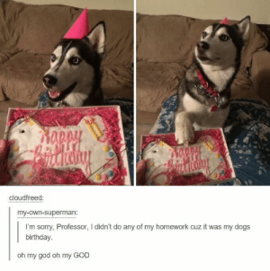 Happy birthday, pupperomg-humor.tumblr.com: cloudfreed:  my-own-superman:  I'm sorry, Professor, I didn't do any of my homework cuz it was my dogs  birthday  oh my god oh my GOD Happy birthday, pupperomg-humor.tumblr.com