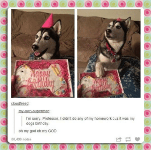 srsfunny:  She's Got A Valid Excusehttp://srsfunny.tumblr.com/: cloudfreed:  my-own-superman:  I'm sorry, Professor, I didn't do any of my homework cuz it was my  dogs birthday.  oh my god oh my GOD  88,490 notes srsfunny:  She's Got A Valid Excusehttp://srsfunny.tumblr.com/