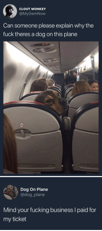 can-someone-please: CLOUT MONKEY  @MyGemNow  Can someone please explain why the  fuck theres a dog on this plane   Dog On Plane  @dog_plane  Mind your fucking business I paid for  my ticket