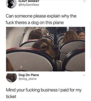 .: CLOUT MONKEY  @MyGemNow  Can someone please explain why the  fuck theres a dog on this plane  Dog On Plane  @dog_plane  Mind your fucking business I paid for my  ticket .