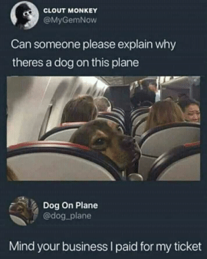 dog has business to do via /r/memes https://ift.tt/2KHT0oj: CLOUT MONKEY  @MyGemNow  Can someone please explain why  theres a dog on this plane  Dog On Plane  @dog plane  Mind your business I paid for my ticket dog has business to do via /r/memes https://ift.tt/2KHT0oj