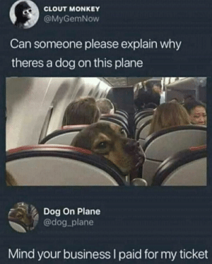 I paid to: CLOUT MONKEY  @MyGemNow  Can someone please explain why  theres a dog on this plane  Dog On Plane  @dog_plane  Mind your business I paid for my ticket I paid to