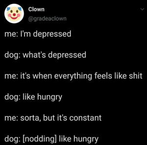 meirl: Clown  @gradeaclown  me: I'm depressed  dog: what's depressed  he: it's when everything feels like shit  dog: like hungry  me: sorta, but it's constant  dog: [nodding] like hungry meirl
