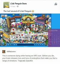 Never forget. https://t.co/WCYyghzeEs: Club Penguin Bans  11 hrs  The last second of Club Penguin  CLUB  11:59:59 PM  THANK YOU OP  LOVE U CP  30 21 3223 24 2  2 2728 30  kitfistovevo  This is someone dying while having an MRI scan. Before you die,  your brain releases tons and tons of endorphins that make you feel a  range of emotions. Tragically beautiful Never forget. https://t.co/WCYyghzeEs