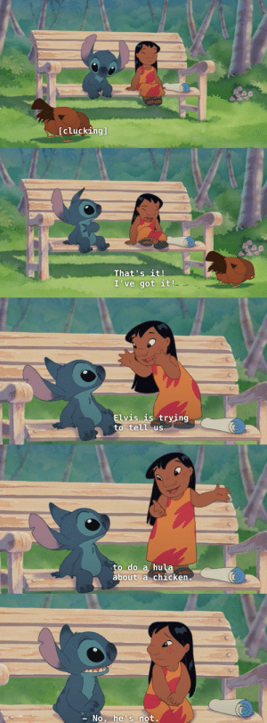 "avas-poltergeist: indigofactory:  tardis-mind-palace:  fyliloandstitch:  This scene cracks me up. Not just for the dialogue, but for the mini-heart attack Stitch seems to have when Lilo yells out.   I love Stitch so goddamn much. He can lift things 300 times his own weight, but one seven year old girl yells out and he grabs his chest in fear   Let us not forget this real ass response, to her stupid ass epiphany.  I love how he holds his hands and looks at like ""honey,no."" : [clucking]   That's it!  I've got it!   Elvis is trying  to tell us   to do a hula  about a chicken   No, he's not. avas-poltergeist: indigofactory:  tardis-mind-palace:  fyliloandstitch:  This scene cracks me up. Not just for the dialogue, but for the mini-heart attack Stitch seems to have when Lilo yells out.   I love Stitch so goddamn much. He can lift things 300 times his own weight, but one seven year old girl yells out and he grabs his chest in fear   Let us not forget this real ass response, to her stupid ass epiphany.  I love how he holds his hands and looks at like ""honey,no."""