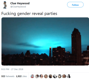 Dank, Fucking, and Memes: Clue Heywood  @ClueHeywood  Follow  Fucking gender reveal parties  9:33 PM-27 Dec 2018  322 Retweets 1,022 Likes  96  D @心の@v Gentrification of Brooklyn has gone way too far now by Chadwiko MORE MEMES