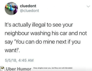 Sexy, Tumblr, and Uber: cluedont  @cluedont  It's actually illegal to see your  neighbour washing his car and not  say 'You can do mine next if you  want!'  5/5/18, 4:45 AM  Uber Humor Sexy nseayou, but they are not interested  Sexy singles near you, but they are not interested. failnation:  Ever been in a storm, Wally?