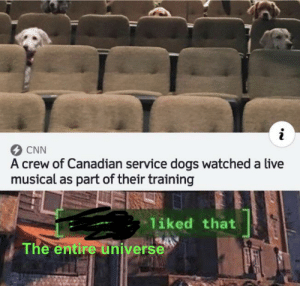It's true: CNN  A crew of Canadian service dogs watched a live  musical as part of their training  liked that  The entire universe It's true