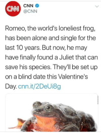 Being Alone, cnn.com, and Valentine's Day: CNN  CNN  @CNN  Romeo, the world's loneliest frog,  has been alone and single for the  last 10 years. But now, he may  have finally found a Juliet that can  save his species. They'll be set up  on a blind date this Valentine's  Day.cnn.it/2DeUi8g ma boi ❤️❤️