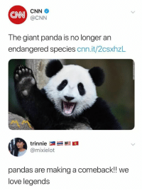 cnn.com, Love, and Panda: CNN  CNN  @CNN  The giant panda is no longer an  endangered species cnn.it/2csxhzL  @mixielot  pandas are making a comeback! we  love legends a little bit of sunshine this month