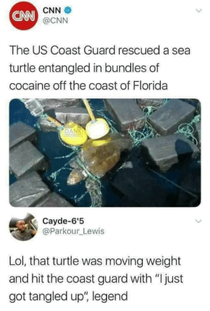 "cnn.com, Dank, and Lol: CNN  CNN  @CNN  The US Coast Guard rescued a sea  turtle entangled in bundles of  cocaine off the coast of Florida  DAN  Cayde-6'5  @Parkour_Lewis  Lol, that turtle was moving weight  and hit the coast guard with ""Ijust  got tangled up"", legend Tangled by jerryrw1971 FOLLOW HERE 4 MORE MEMES."