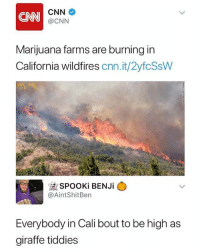 cnn.com, Funny, and California: CNN  @CNN  Marijuana farms are burning in  California wildfires cnn.it/2yfcSsW  @AintShitBen  Everybody in Cali bout to be high as  giraffe tiddies All the pit heads are flocking to cali for that free high • 👉Follow me @no_chillbruh for more