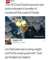 "Legend: CNN  @CNN  The US Coast Guard rescued a sea  turtle entangled in bundles of  cocaine off the coast of Florida  @BestMemes  Cayde-6'5  @Parkour_Lewis  Lol, that turtle was moving weight  and hit the coast guard with ""just  got tangled up', legend Legend"