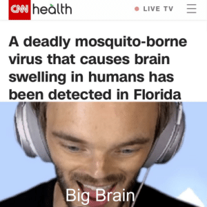 cnn.com, Brain, and Florida: |CNN heàlth  LIVE TV  A deadly mosquito-borne  virus that causes brain  swelling in humans has  been detected in Florida  Big Brain  I1 Felix might be in danger