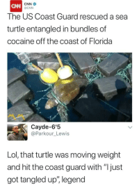 "cnn.com, Lol, and Memes: CNN  The US Coast Guard rescued a sea  turtle entangled in bundles of  cocaine off the coast of Florida  @CNN  ペペ  Cayde-6'!5  @Parkour_Lewis  Lol, that turtle was moving weight  and hit the coast guard with ""Ijust  got tangled up"", legend <p>OG Turtle trapping out the Gulf via /r/memes <a href=""https://ift.tt/2rEpTtV"">https://ift.tt/2rEpTtV</a></p>"