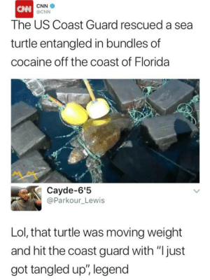 "OG Turtle trapping out the Gulf: CNN  The US Coast Guard rescued a sea  turtle entangled in bundles of  cocaine off the coast of Florida  @CNN  Cayde-6'5  @Parkour_Lewis  Lol, that turtle was moving weight  and hit the coast guard with ""Ijust  got tangled up"", legend OG Turtle trapping out the Gulf"