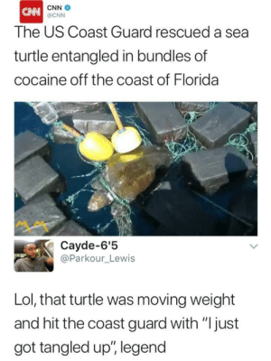 "cnn.com, Lol, and Trapping: CNN  The US Coast Guard rescued a sea  turtle entangled in bundles of  cocaine off the coast of Florida  @CNN  ペペ  Cayde-6'!5  @Parkour_Lewis  Lol, that turtle was moving weight  and hit the coast guard with ""Ijust  got tangled up"", legend OG Turtle trapping out the Gulf"