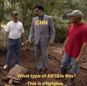 Ar15: CNN  -What type of AR15 is this?  -This is a tortoise