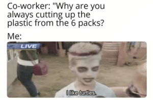 "https://t.co/g0LgVCnzYm: Co-worker: ""Why are you  always cutting up the  plastic from the 6 packs?  Me:  LIVE  Oike turtles. https://t.co/g0LgVCnzYm"
