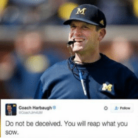 Jim Harbaugh with the legendary subtweet after the 49ers fired Jim Tomsula. SHOTS: Coach Harbaugh  Do not be deceived. You will reap what you  SOW. Jim Harbaugh with the legendary subtweet after the 49ers fired Jim Tomsula. SHOTS