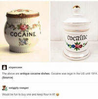 Memes, Police, and Cocaine: COCAINE  Cocaine  sixpence ee  The above are antique cocaine dishes. Cocaine was legal in the US until 1914.  (Source)  swiggity-swegan  Would be fun to buy one and keep flour in it!! follow @911.police for more