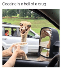 Hell Of A Drug: Cocaine is a hell of a drug