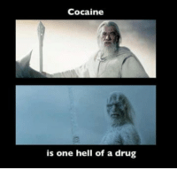 cocaine is a hell of a drug: Cocaine  is one hell of a drug