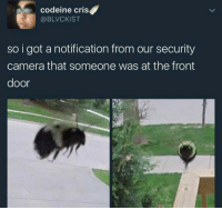 who would win worlds most advanced security system or one honey boi: codeine cris  @BLVCKIST  so i got a notification from our security  camera that someone was at the front  door who would win worlds most advanced security system or one honey boi