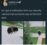 "<p>Security camera via /r/memes <a href=""https://ift.tt/2lLfvx2"">https://ift.tt/2lLfvx2</a></p>: codeine criS  @BLVCKIST  so i got a notification from our security  camera that someone was at the front  door <p>Security camera via /r/memes <a href=""https://ift.tt/2lLfvx2"">https://ift.tt/2lLfvx2</a></p>"