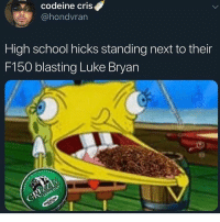 Fuck hip hop Luke Bryan and Timmcgraw are the move: codeine cris  @hondvran  High school hicks standing next to their  F150 blasting Luke Bryan Fuck hip hop Luke Bryan and Timmcgraw are the move