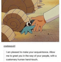 """Http, Human, and Touch: coelasquid:  I am pleased to make your acquaintance. Allovw  me to greet you in the way of your people, with a  customary human hand-touch. <p>I am pleased to make your acquaintance! via /r/wholesomememes <a href=""""http://ift.tt/2lGpFyr"""">http://ift.tt/2lGpFyr</a></p>"""