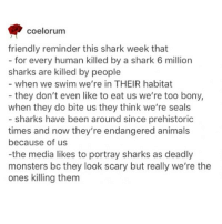 Animals, Memes, and Shark: coelorum  friendly reminder this shark week that  - for every human killed by a shark 6 million  for every human killed by a shark 6 million  sharks are killed by people  when we swim we're in THEIR habitat  they don't even like to eat us we're too bony,  when they do bite us they think we're seals  - sharks have been around since prehistoric  times and now they're endangered animals  because of us  -the media likes to portray sharks as deadly  monsters bc they look scary but really we're the  ones killing them ! - 🌙