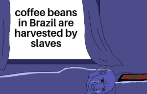 there has to be a better way: coffee beans  in Brazil are  harvested by  slaves there has to be a better way