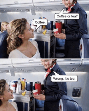 Coffee or tea?: Coffee or tea?