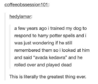 "Harry Potter, Avada Kedavra, and Doggo: coffeeobssession 101:  hedylamar:  a few years ago i trained my dog to  respond to harry potter spells and i  was just wondering if he still  remembered them so i looked at him  and said ""avada kedavra"" and he  rolled over and played dead  This is literally the greatest thing ever. Wingardium leviosa doggo"