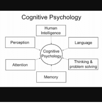 thinking problem solving cognition
