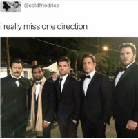 Memes, One Direction, and 🤖: @coldfriedrice  i really miss one direction