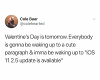 "Cute, Memes, and Valentine's Day: Cole Buer  @colehearted  Valentine's Day is tomorrow. Everybody  is gonna be waking up to a cute  paragraph & imma be waking up to ""iOS  11.2.5 update is available"" Real talk 😤😂 ValentinesDay WSHH"