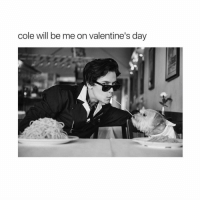 Such a cutie: cole will be me on Valentine's day Such a cutie