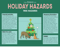 With the holidays coming up we wanted to share a few tips to help keep your pets safe around the Christmas tree! 🎄   EXTRA SAFETY TIP: Surround the tree with an x-pen to prevent access to low-hanging ornaments, tree water and presents.  Don't leave the tree lights on unattended as the lights often make the shiny ornaments and the tree in general more enticing to curious critters.: Colgary Humane society  HOLIDAY HAZARDS  TREE HAZARDS  Potential pesticides  In 2014 there were some  reports that Christmas trees were  being sprayed with a pesticide/  preservative spray that contained  ethylene glycol - a substance  that is highly toxic to pets. This is  a good reminder to pet owners  to be cautious about purchasing  trees with artificial sprays or  decorative frosting in case a pet  chews on the needles  Dangerous Decorations  Tinsel and other long stringy  decorations can be accidentally  eaten by pets and cause  damage or blockage of the  digestive tract. Decorations  painted with toxic paints or  adorned with glitter could also  be dangerous if eaten while  glass decorations can break  and injure paws if knocked off  the tree  no-break' or  with non-toxic paint to ensure a  happy holiday season  Fertilizer and other chemicals  commonly added to Christmas  tree water can be harmful to  pets. If you are putting water  in your Christmas tree stand  be sure to cover it securely to  keep curious noses from turning  the tree water into a holiday  cocktail  TIMBER!  If you have a very energetic pet  (particularly a bigger onel you  may want to tether your tree to  the wall. It only takes a second  for a tree to end up on the floor! With the holidays coming up we wanted to share a few tips to help keep your pets safe around the Christmas tree! 🎄   EXTRA SAFETY TIP: Surround the tree with an x-pen to prevent access to low-hanging ornaments, tree water and presents.  Don't leave the tree lights on unattended as the lights often make the shiny ornaments and the tree in general