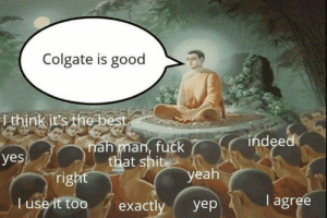 Fuck That: Colgate is good  Ithink it's the best  indeed  nah man, fuck  that shit  yes  right  yeah  I agree  T use it too  exactly  yep