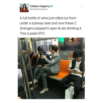goals: Colleen Hagerty  @colle enhagerty  A full bottle of wine just rolled out from  under a subway seat and now these 2  strangers popped it open & are drinking it.  This is peak NYC  ANASTASIA goals