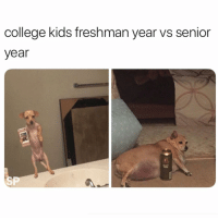 College, Funny, and Kids: college kids freshman year vs senior  year  SP Can confirm @studentproblems 😅