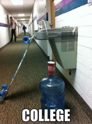College, Life, and Tumblr: COLLEGE srsfunny:Clever College Life Hack