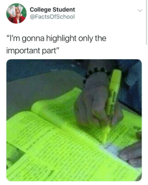 "highlight: College Student  @FactsOfSchool  ""I'm gonna highlight only the  important part"""