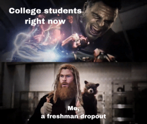 I didn't make it but you can!: College students  right now  u/neo_t  Me  a freshman dropout I didn't make it but you can!