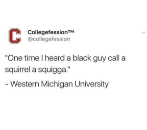 "Welcome to Michigan by Anatoliy-Baranov MORE MEMES: CollegefessionTM  @collegefession  One time I heard a black guy call a  squirrel a squigga.""  - Western Michigan University Welcome to Michigan by Anatoliy-Baranov MORE MEMES"