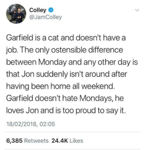 Garfield loves Jon: Colley  @JamColley  Garfield is a cat and doesn't have a  job. The only ostensible difference  between Monday and any other day is  that Jon suddenly isn't around after  having been home all weekend.  Garfield doesn't hate Mondays, he  loves Jon and is too proud to say it.  18/02/2018, 02:05  6,385 Retweets 24.4K Likes Garfield loves Jon